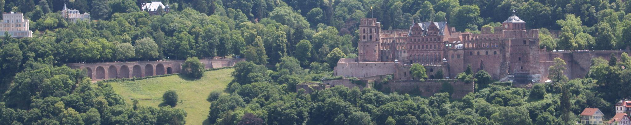 Heidelberg Guide